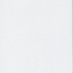 kolor 053 Pure White - delikatna struktura | RAL 250 92 05*